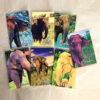Cadernetas Nossas Meninas